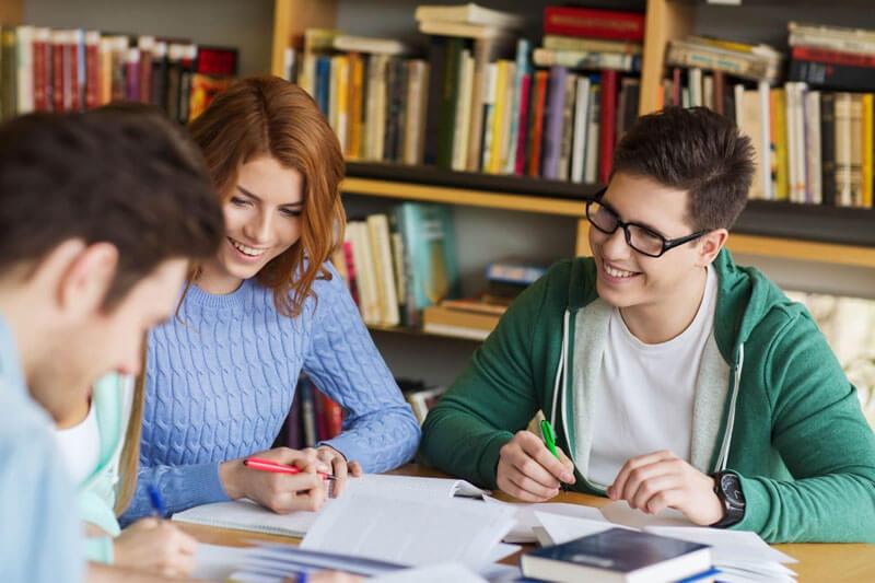 Student-Insights-Professional-Essay-Service
